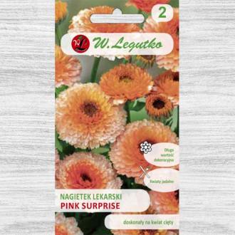 Gălbenele Pink Surprise Legutko imagine 3