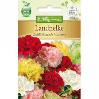 Garoafă de grădină cu flori duble, mix multicolor Chrestensen imagine 8