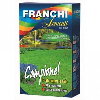 Gazon Franchi Sementi Campione imagine 5