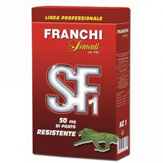 Gazon Green SF1 Resistente imagine 8