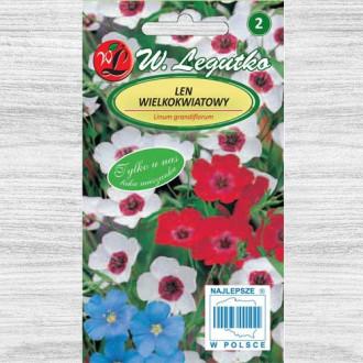 In decorativ, mix multicolor Legutko imagine 1