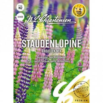 Lupin Border, mix multicolor Chrestensen imagine 6