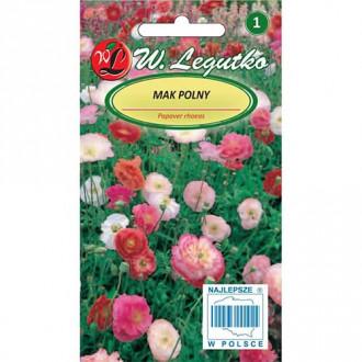 Mac de câmp, mix multicolor Legutko imagine 1