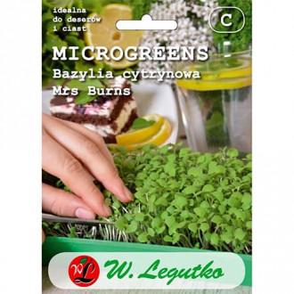 Microplante - Busuioc lămâios Mrs. Burns Legutko imagine 7
