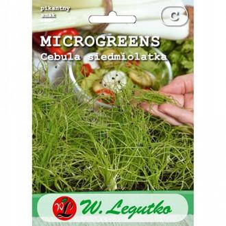 Microplante - Ceapă verde Legutko imagine 7