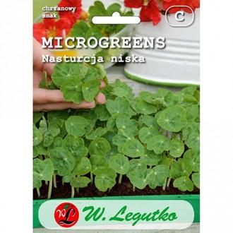 Microplante - Năsturel pitic Legutko imagine 2