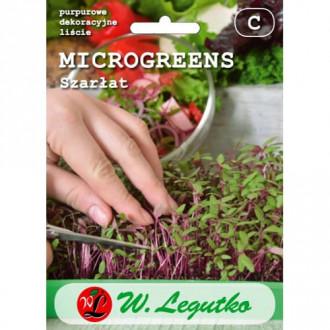 Microplante - Trompa elefantului Legutko imagine 1