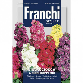 Mixandră cu flori duble, mix multicolor imagine 1