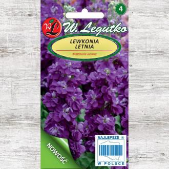 Mixandre Excelsior violet Legutko imagine 6