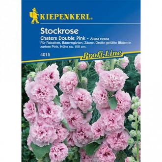 Nalbă de grădină (Alcea) Chaters Double Pink Kiepenkerl imagine 8