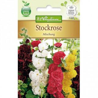 Nalbă de grădină, mix multicolor Chrestensen imagine 2