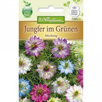Nigella damascena, mix multicolor Chrestensen imagine 1
