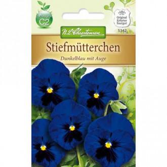 Panseluțe Dark Blue eyed Chrestensen imagine 3