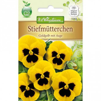 Panseluțe Golden Yellow eyed Chrestensen imagine 4