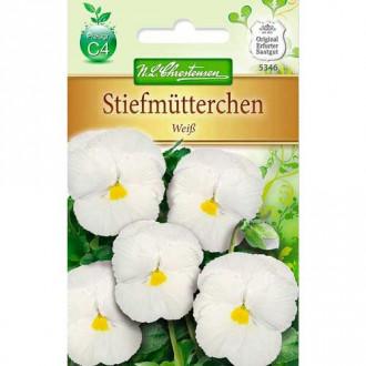 Panseluțe White Chrestensen imagine 6