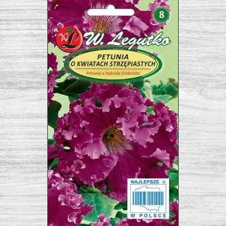 Petunie curgătoare violet Legutko imagine 6