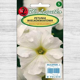 Petunie grandiflora albă Legutko imagine 4