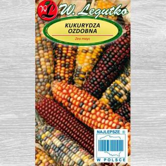 Porumb ornamental, mix multicolor Legutko imagine 3