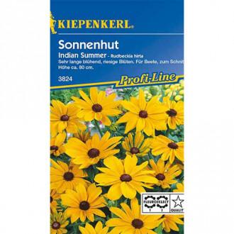 Rudbeckia (Bulgări de soare) Indian Summer Kiepenkerl imagine 3
