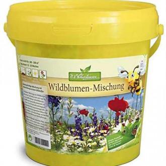 Flori și ierburi sălbatice pentru grădină, mix multicolor Chrestensen imagine 1
