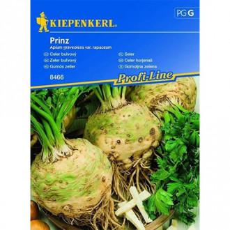 Țelină de rădăcină Prinz Kiepenkerl imagine 7