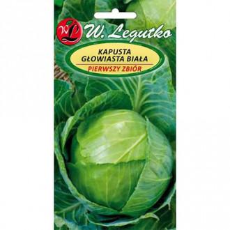 Varză Prima recoltă Legutko imagine 7