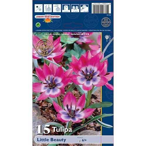 Lalele Little Beauty imagine 1 articol 67499