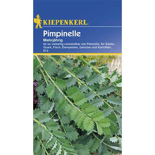 Urzică parfumată perenă Kiepenkerl imagine 1 articol 86372
