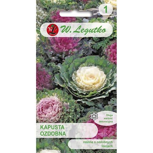 Varză decorativă, mix multicolor Legutko imagine 1 articol 69596