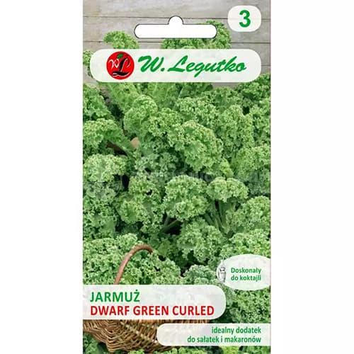 Varză Kale pitică Green Curled Legutko imagine 1 articol 69474