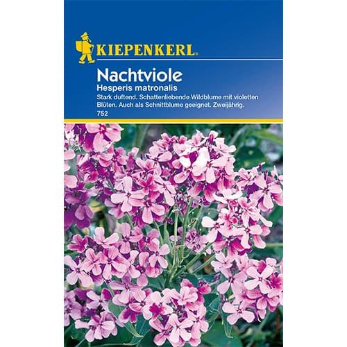 Violetă de noapte Kiepenkerl imagine 1 articol 77437
