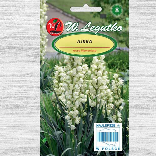 Yucca albă Legutko imagine 1 articol 78605