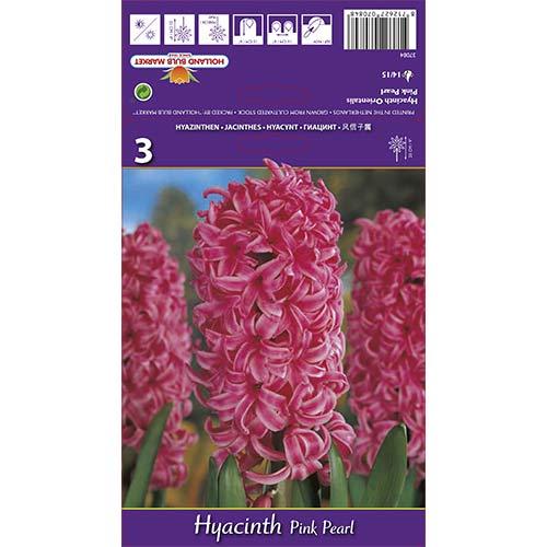 Zambile Pink Pearl imagine 1 articol 67365