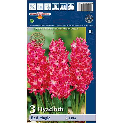 Zambile Red Magic imagine 1 articol 67593