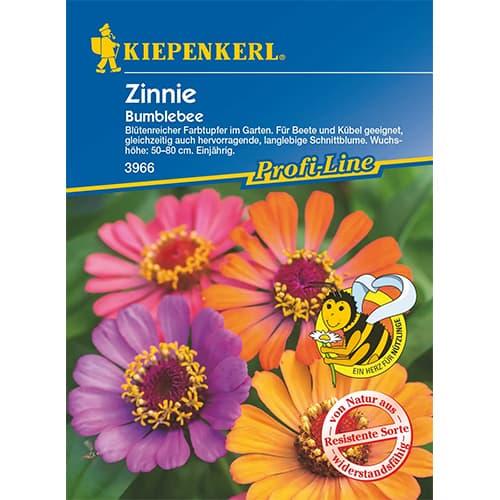 Zinnia (Cârciumăreasă) Bumblebee Kiepenkerl imagine 1 articol 87268