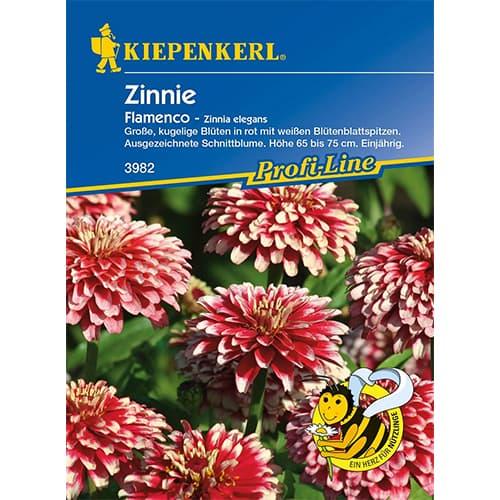 Zinnia (Cârciumăreasă) Flamenco Kiepenkerl imagine 1 articol 86359