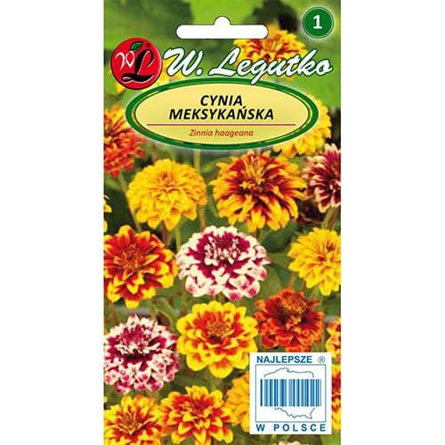 Zinnia (Cârciumăreasă) mexicană, mix multicolor Legutko imagine 1 articol 78547