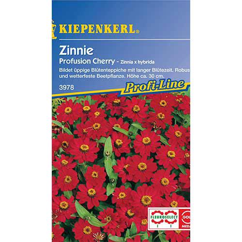 Zinnia (Cârciumăreasă) Profusion Cherry Kiepenkerl imagine 1 articol 86358