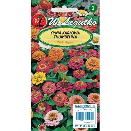 Zinnia (Cârciumăreasă) Thumbelina, mix multicolor Legutko imagine 1 articol 78545