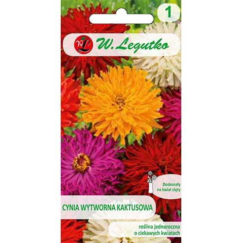 Zinnia (Cârciumăreasă) tip cactus, mix multicolor Legutko imagine 1 articol 86820