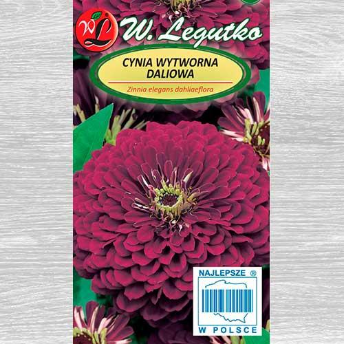 Zinnia Violet Queen Legutko imagine 1 articol 69577