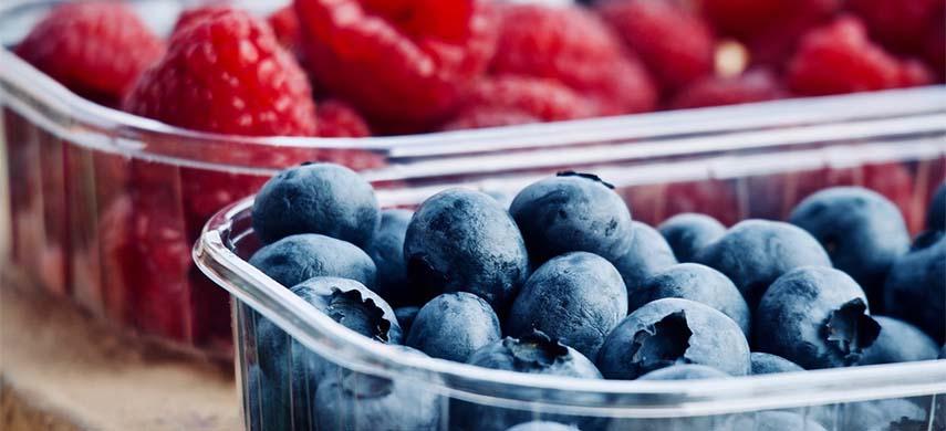 fructe de padure care se planteaza toamna