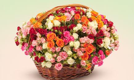 Cascade de flori | GrădinaMax