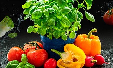 Grădina de legume | GrădinaMax