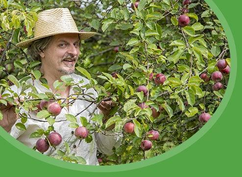 Catalog - -50% la pomii fructiferi - GrădinaMax România
