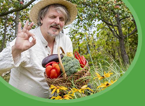 Catalog - -60% la semințe de legume și flori - GrădinaMax România